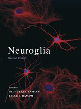 Neuroglia | Oxford Scholarship Online