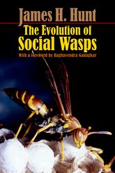 The Evolution of Social Wasps$
