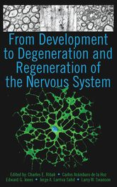 From Development to Degeneration and Regeneration of the Nervous System