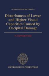 Disturbances of Lower and Higher Visual Capacities Caused by Occipital Damage