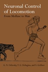 Neuronal Control of Locomotion$