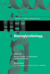 Neuroglycobiology