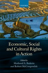 Economic, Social, and Cultural Rights in Action
